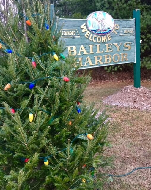 Town sign and Christmas tree