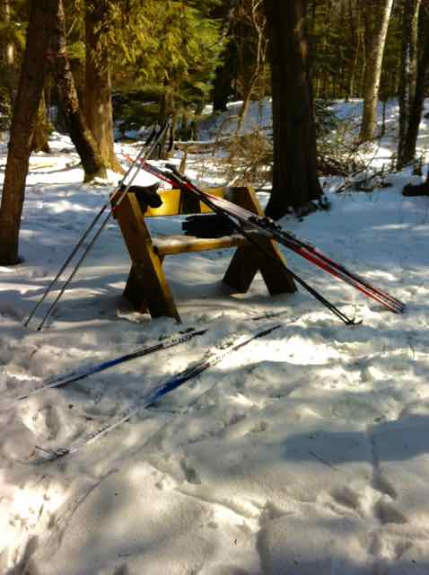 Classic cross country skis take a rest on the trail at Whitefish Dunes State Park.