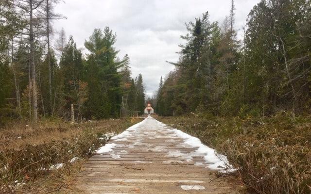 Ridges boardwalk
